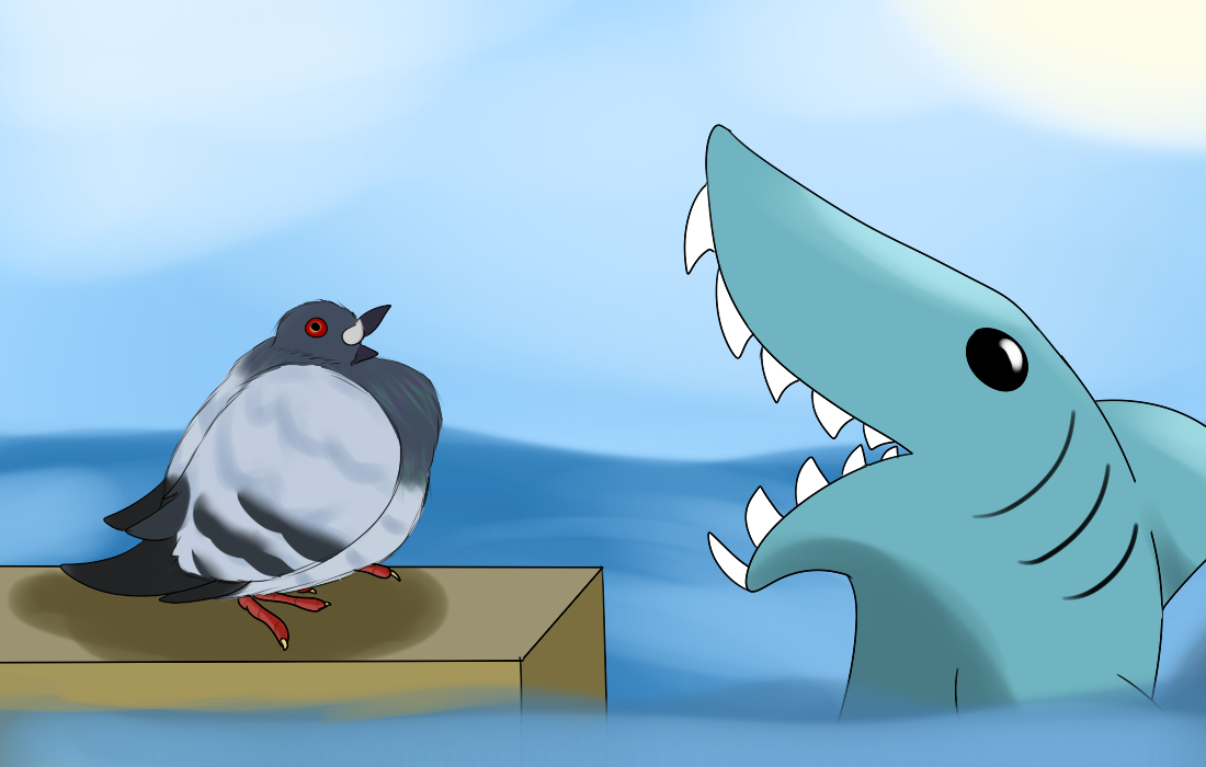 Fat pigeon and Shark